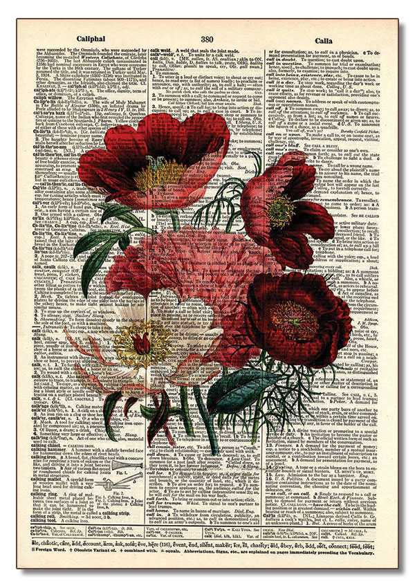 234 Red Bouquet of Flowers – Vintage Dictionary Art | Retail
